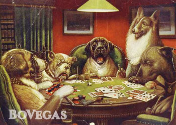Poker Dogs Playing Poker